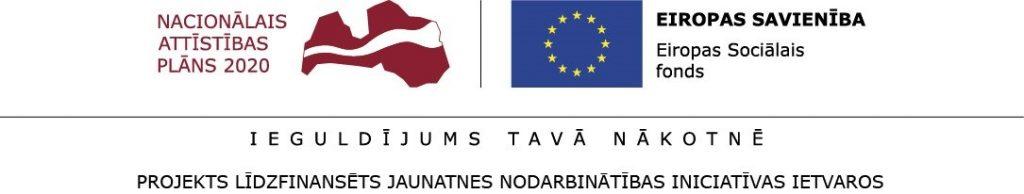 ES fondu vizualo elementu ansamblis ar JNI 2016